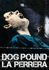 Dog Pound, la perrera