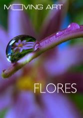 Moving Art: Flores